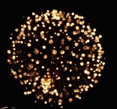 Plein les mirettes, le feu d'artifice, et cette belle dorée suffirait à elle seule à faire une broche...